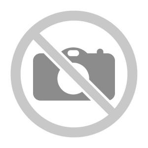 Дед Мороз (1000г)
